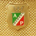 中古ピアノ ペトロフ(PETROF P115I CHIPP) 細部までこだわったチェコの老舗ブランドのピアノ
